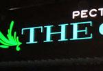 Объемные световые буквы The Фиш, производство Бризат
